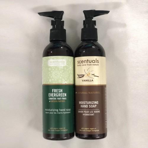 Combo Nước rửa tay Fresh Evergreen + Nước rửa tay Vani